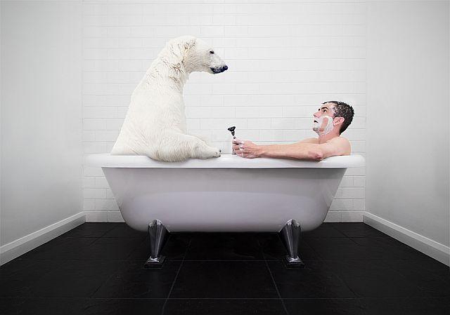 Как правильно закаливаться - ванная с медведем