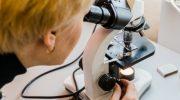 Интересные факты из мира микроскопических исследований – все о современном оптическом микроскопе
