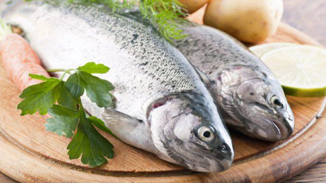 Польза свежемороженой рыбы